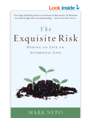 Image for The Exquisite Risk by Mark Nepo