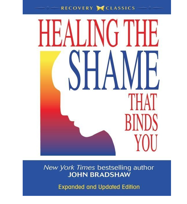 Image for Healing the Shame by John Bradshaw